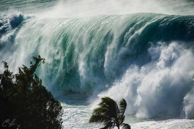 huge giant-wave-hawaii